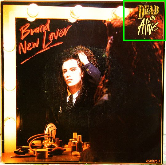 DEAD OR ALIVE - Brand new lover, pochette recto du 45 tours Collector promotionnel vente interdite